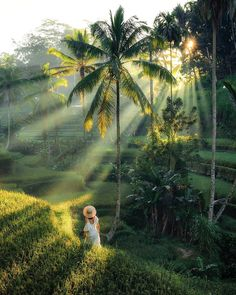 A fantastic walk through the rice terraces just outside of Ubud. Holiday in Bali is awesome! Ubud, Beautiful Islands, Beautiful World, Beautiful Places, Bali Travel Guide, Asia Travel, Places To Travel, Places To Visit, Station Balnéaire