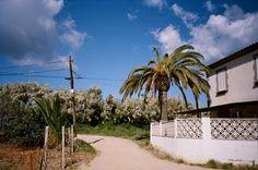 RAMÓN GRAU. Director of Photography: Resultados de la búsqueda de llavaneras