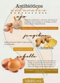 #Redescubre Prueba estos grandiosos alimentos con propiedades antibióticas naturales. #Nutrición y #Salud YG > nutricionysaludyg.com