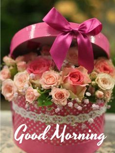 Good Morning images with Flowers that most beautiful and heart touching. share Good Morning images with Flowers with your friends and family. Good Morning Beautiful Flowers, Good Morning Images Flowers, Good Morning Roses, Beautiful Roses, Pretty Flowers, Frühling Wallpaper, Rosa Rose, Deco Floral, Good Morning Greetings
