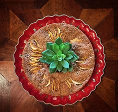 The most pleasant way to start the day is with an apple walnut #cake. Perfect for #breakfast, your family'll love it! #dessert #sweet #recipe