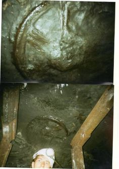 "Print of the ""wheel"" in Carboniferous sandstonehttp://earthbeforeflood.com/imprint_of_wheel_in_carboniferous_sandstone_in_coalmine_rostov_region.html"