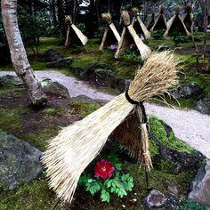 お出かけ先の画像 by 池さん   お出かけ先と寒牡丹と牡丹と日本と日本の伝統と日本庭園と古典園芸植物と伝統園芸植物とボタニカルスポットコンテスト2015冬