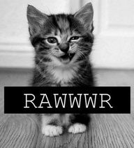 RAWRR this is how I feel sine days at work