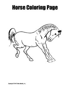 This 15 page bundle of coloring pages about horses includes an array of horse coloring worksheets to suit a range of grade and ability levels. Those needing a horse-themed sponge activity or printable horse coloring images will find these resources helpful.