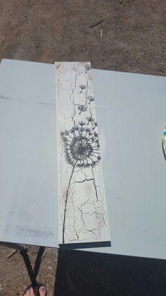 Painted Dandelion