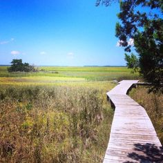 Family Travel Omni Amelia Island Plantation Boardwalk. Loved this other side to the resort. #familytravel