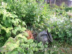 in my garden (Nie Tylko Meble)