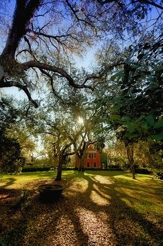 Shadows On The Teche Plantation - New Iberia, Louisiana