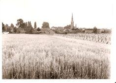 Landelijk Ommel met de kerk te midden van de boerderijen omstreeks 1939