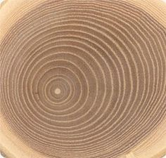 rondjes structuur is structuur gemaakt d.m.v. rondjes