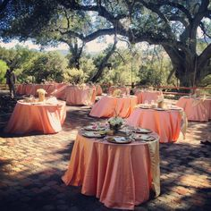 Buy 120 Inch Round Peach Tablecloth For Weddings At LinenTablecloth!  Seamless And Machine Washable Table Linens, These Wedding Tablecloths Are  Perfu2026