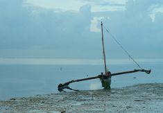 Boat, Boat, Indian Ocean, Catamaran, Landscape #boat, #boat, #indianocean, #catamaran, #landscape