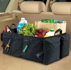 Now what guy wouldn't like a GIANT cargo organizer that stores everything but the kitchen sink? Okay, maybe even the kitchen sink! This one is tough enough for a pick-up truck! Available with free-ride shipping on orders of $50 or more, at www.highroadorganizers.com
