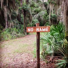 Get off the beaten path and explore Cannon's Point on St. Simons Island #hiking #nature