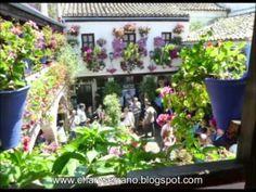 PATIO Calle San Basilio, 50, en Córdoba (España) - YouTube