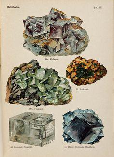 Schleyer, August (no date, ca. 1909)