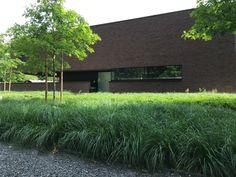 Strak - Tuin- en landschapsarchitect Evelien Claus Ornamental Grasses, Deco, Garden Inspiration, Sweet Home, Sidewalk, New Homes, Home And Garden, Yard, House Design