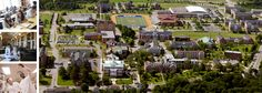 Saint Francis Xavier University in is one of Canada's finest academic institutions, located in Antigonish, Nova Scotia. Francis Xavier, St Francis, Places To See, Places Ive Been, Whatsoever Things Are True, Xavier University, Alma Mater, Nova Scotia, Dolores Park