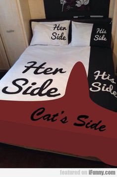 Her Side, His Side, Cat's Side...