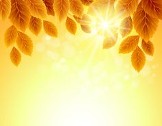 Autumn Golden yellow background vector 02