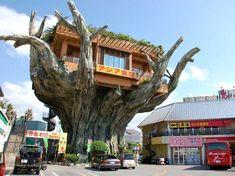 A treehouse restaurant in Okinawa, Japan - Imgur