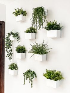 Indoor Plant Wall, Plant Wall Decor, Hanging Plant Wall, Fake Plants Decor, House Plants Decor, Indoor Planters, Faux Plants, Small Plants, Hang Plants On Wall