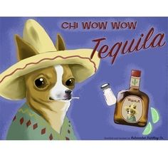 Chihuahua Tequila