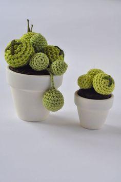 Cactus on pinterest crochet cactus felt succulents and for Piante grasse uncinetto
