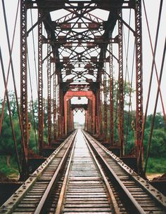 www.flickr.com via Tumblr
