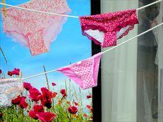 Shop-window in 's-Hertogenbosch .     [sexy lingerie voor iedereen|Lingerie voor dames en heren|dames lingerie voor een bewuste vrouw|babydoll voor de fun]