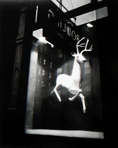Berenice AbbottDesigner's Window, ca. 1948Gelatin silver print