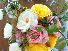 Roses from Sally's garden.