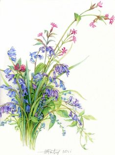 it's time to watercolors Anne Marie Patry-Belluteau. Discussion on LiveInternet - Russian Service Online Diaries Illustration Botanique, Illustration Blume, Nature Illustration, Art Floral, Floral Prints, Watercolor Design, Watercolor And Ink, Watercolor Flowers, Watercolor Paintings