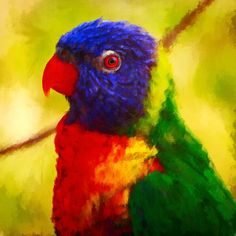 Rainbow lorikeet.  Oil painting.   #artwork #impressionism #oilpainting #oilpaint #painting #bird #lorikeet #rainbow #rainbowlorikeet #supportlocalartists #australia #aussie #wildlife