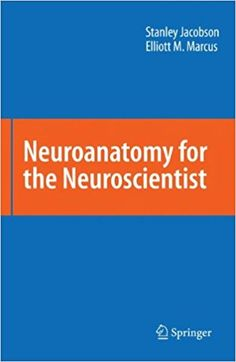Essentials of human anatomy physiology 11th edition free ebook neuroanatomy for the neuroscientist 1st edition fandeluxe Image collections