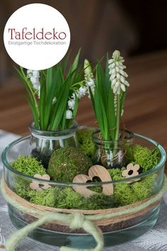 It's spring time! The table decoration with snowdrops, white hyacinth… - garden decoration - It's spring time! The table decoration with snowdrops, white hyacinth … - Cactus E Suculentas, White Hyacinth, Valley Flowers, Diy Spring Wreath, Deco Floral, Decoration Table, Spring Decorations, Nature Decor, Deco Table
