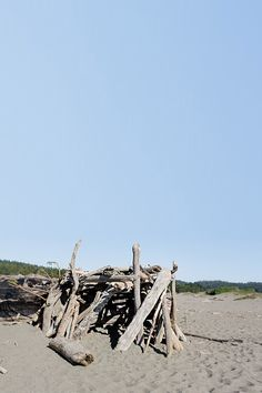 Driftwood Forts at Gualala River Beach in Northern California