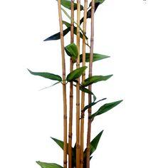 Bamboo stick Artificial Plant - 15 pcs