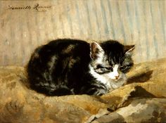 cat on blanket by Henriette ronner