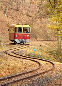 New narrow-gauge railway worth to visit north from Budapest