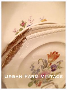 Sweet Gold trimmed floral plates.