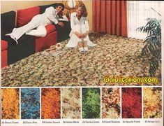 Shag carpet! We thought it looked great! lol... :)