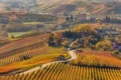 Enjoy the delightful views of the idyllic vineyards of Piedmont