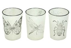 Asst. of 6 Stamped Insect Votives, White on OneKingsLane.com