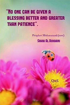 Hadith ( saying ) of Prophet Muhammad ( saw ) Bukhari Saw Quotes, Words Quotes, Sayings, Muslim Quotes, Islamic Quotes, All About Islam, Peace Be Upon Him, Islam Religion, Self Reminder
