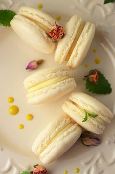 reteta de macarons frantuzesti Macarons, Baby Food Recipes, Cake Recipes, Dessert Recipes, Easy Desserts, Delicious Desserts, Albanian Recipes, Romanian Desserts, Good Food
