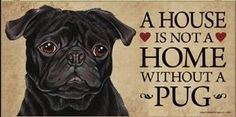"Do you have a Pug or know someone who does?  This is a great plaque to decorate your home and hang in any room to show your passion about this cute dog breed. Recommended for indoor use only. Measures 5"" x 10"" .  Made in the U.S.A.  Makes a wonderful gift!      A House Is Not A Home Without A Pug. $16.99"