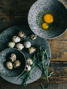 Quail eggs still life photo