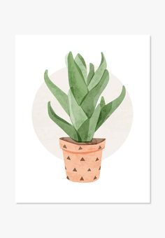 Print: Aloe Vera Cactus A must-have for anyone who loves the trendy cactus and succulent style. This…A must-have for anyone who loves the trendy cactus and succulent style. Succulents Drawing, Cacti And Succulents, Plant Illustration, Watercolor Illustration, Cactus Plante, Plant Drawing, Guache, Bedroom Plants, Cactus Art